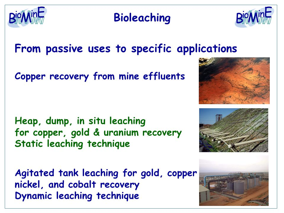 Bioleaching From passive uses to specific applications Agitated tank leaching for gold, copper nickel, and cobalt recovery Dynamic leaching technique