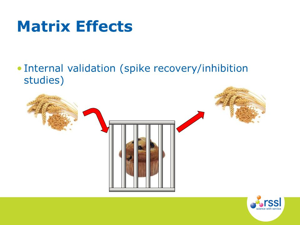Internal validation (spike recovery/inhibition studies) Matrix Effects