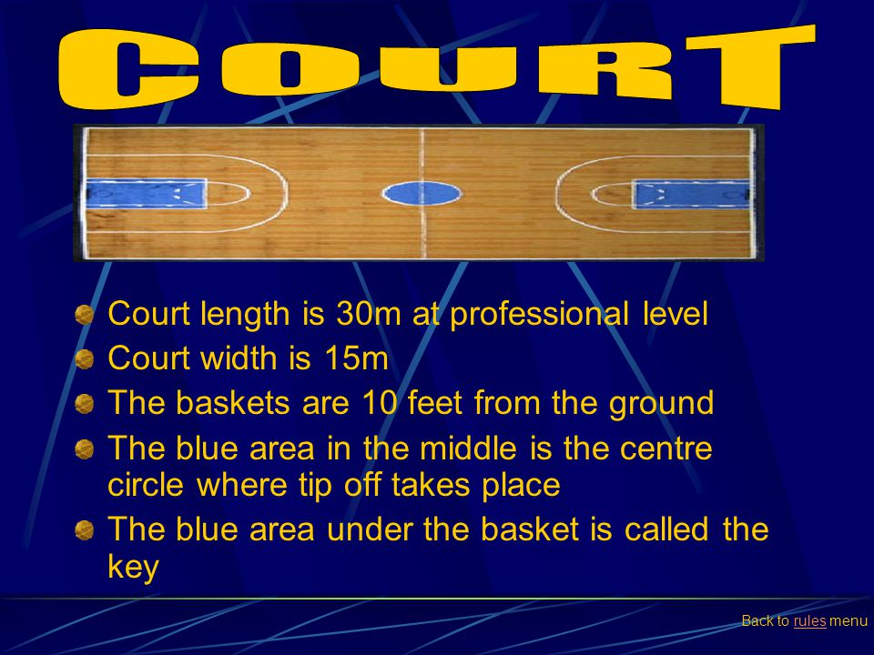 Court length is 30m at professional level Court width is 15m The baskets are 10 feet from the ground The blue area in the middle is the centre circle
