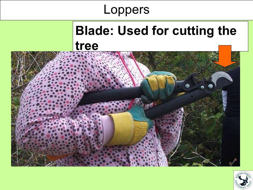 Handle: Used for opening the loppers so you can put them around the tree you want to cut Loppers