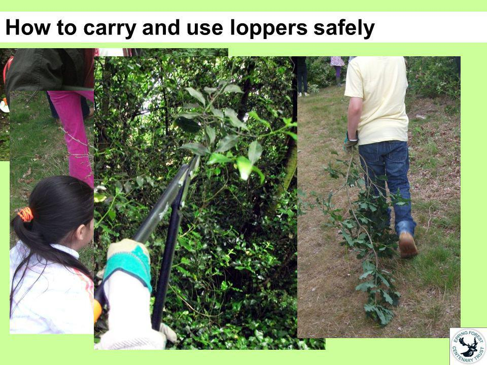 How to carry and use loppers safely