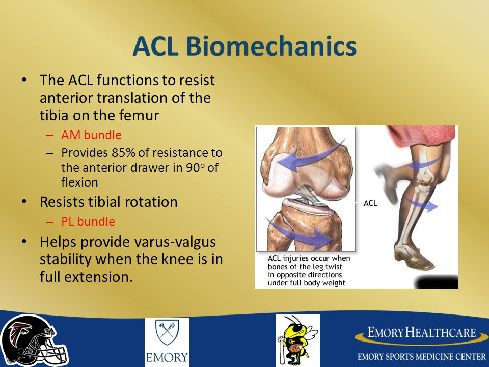 Double Bundle ACL Reconstruction Attempts to restore both the AM and PL bundle of ACL Restore both anterior translation and rotatory control