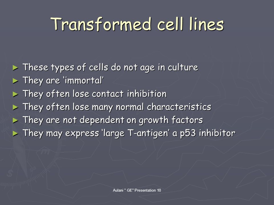 Aulani GE Presentation 10 Transformed cell lines These types of cells do not age in culture These types of cells do not age in culture They are immortal They are immortal They often lose contact inhibition They often lose contact inhibition They often lose many normal characteristics They often lose many normal characteristics They are not dependent on growth factors They are not dependent on growth factors They may express large T-antigen a p53 inhibitor They may express large T-antigen a p53 inhibitor