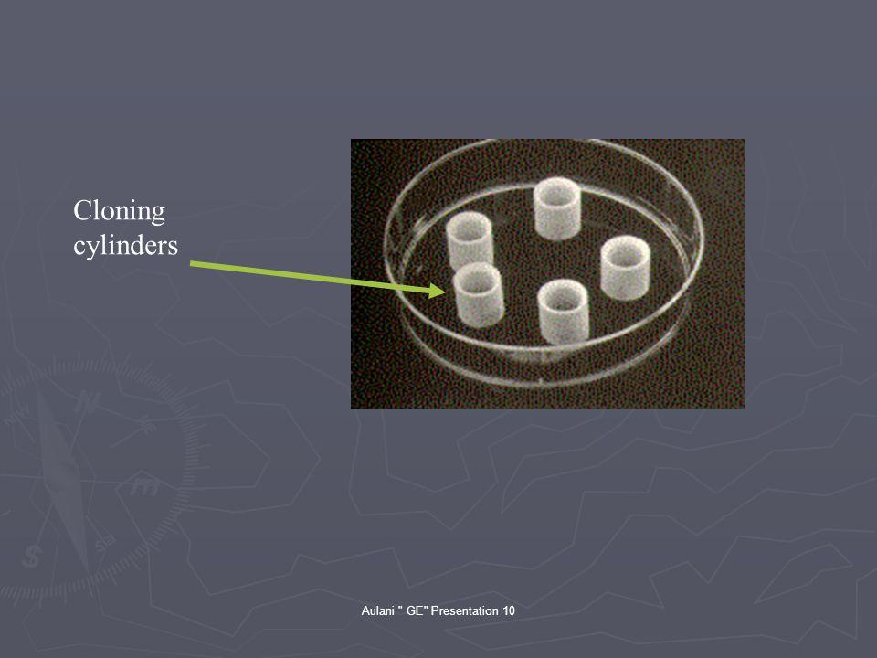 Aulani GE Presentation 10 Cloning cylinders