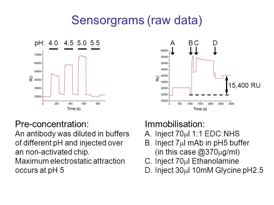 Sensorgrams (raw data) 4.04.55.05.5pH: Pre-concentration: An antibody was diluted in buffers of different pH and injected over an non-activated chip.
