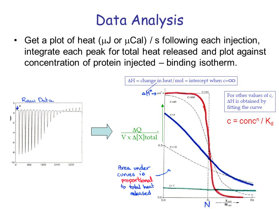 Data Analysis Get a plot of heat ( J or Cal) / s following each injection, integrate each peak for total heat released and plot against concentration of protein injected – binding isotherm.