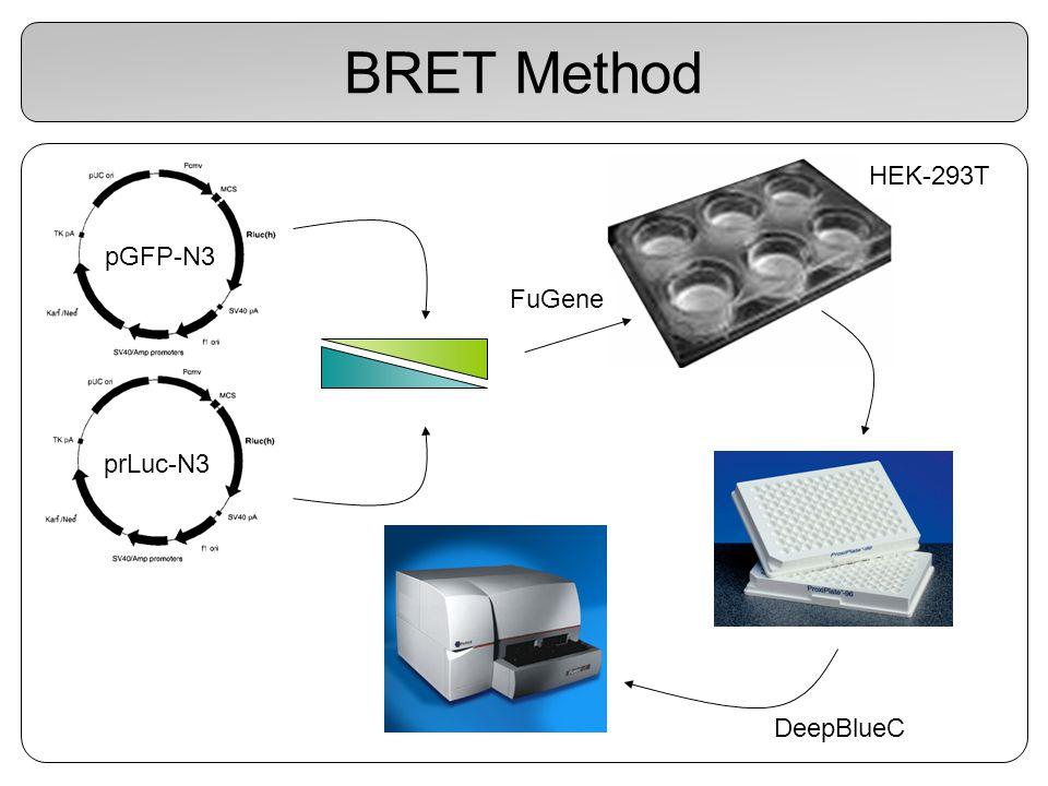 BRET Method pGFP-N3 HEK-293T prLuc-N3 FuGene DeepBlueC