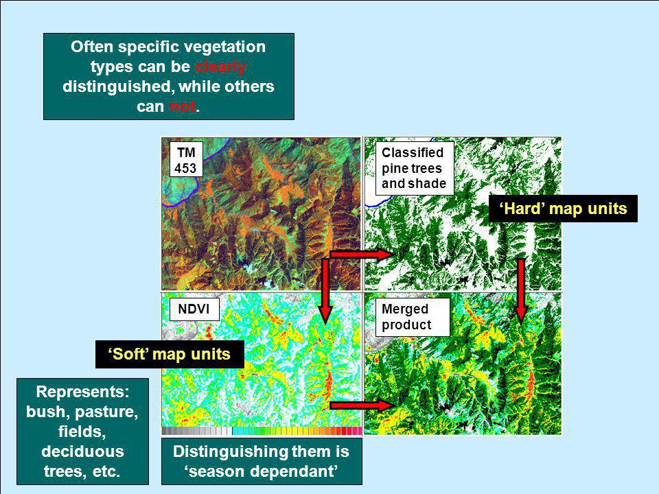 TM 453 NDVI Classified pine trees and shade Often specific vegetation types can be clearly distinguished, while others can not. Soft map units Represe