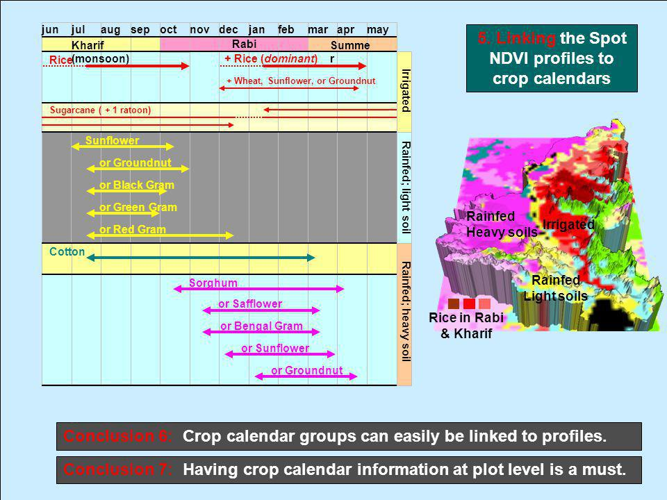 Rice in Rabi & Kharif Irrigated Rainfed Heavy soils Rainfed Light soils 5. Linking the Spot NDVI profiles to crop calendars Conclusion 6: Crop calenda