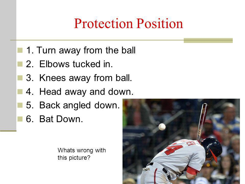Protection Position 1. Turn away from the ball 2. Elbows tucked in. 3. Knees away from ball. 4. Head away and down. 5. Back angled down. 6. Bat Down.