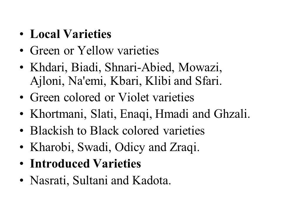 Local Varieties Green or Yellow varieties Khdari, Biadi, Shnari-Abied, Mowazi, Ajloni, Na emi, Kbari, Klibi and Sfari.