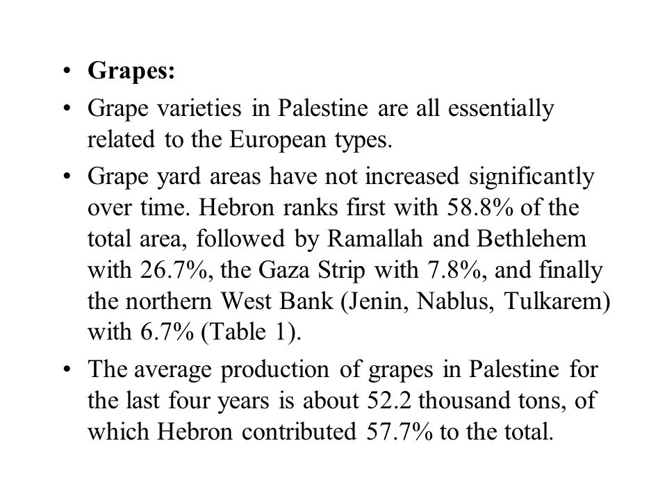 Grapes: Grape varieties in Palestine are all essentially related to the European types.