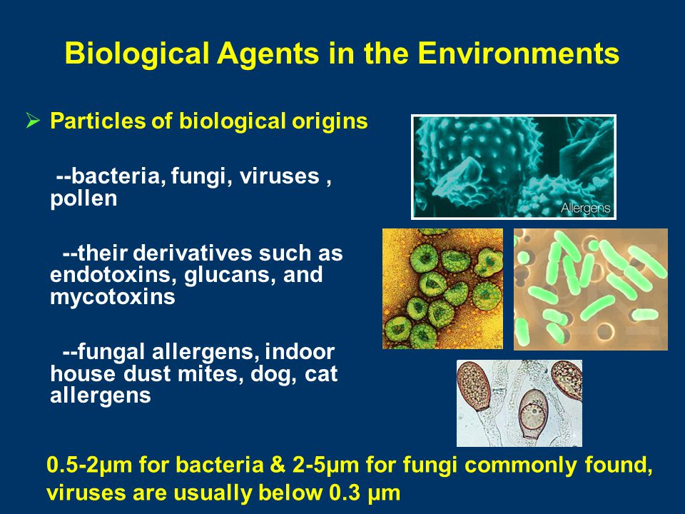 Current Research Areas of BioAerosol Science Integration of bioaerosol science with molecular science such as qPCR, PCR, and ELISA High volume of sampling: Portable Microbial Sampler, aerosol-2-hydrosol techniques Investigation of the link between bioaerosol exposure and health effects Development of high throughput environmental bio- sensor
