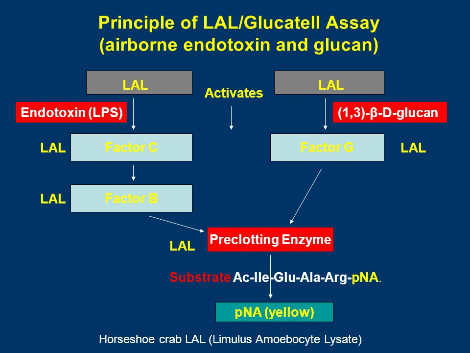 Principle of LAL/Glucatell Assay (airborne endotoxin and glucan) LAL Factor CFactor G LAL Factor B Endotoxin (LPS) LAL Activates Preclotting Enzyme LA