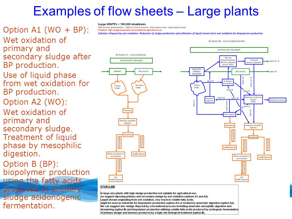 Examples of flow sheets – Large plants Option A1 (WO + BP): Wet oxidation of primary and secondary sludge after BP production.