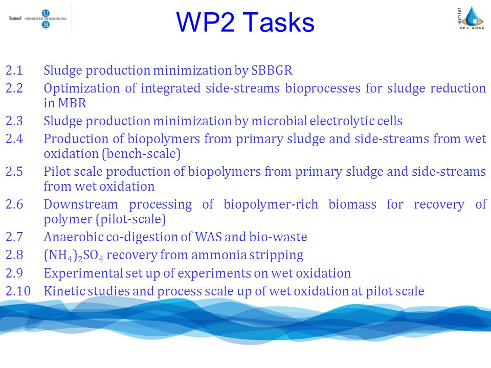 WP2 Tasks 2.1Sludge production minimization by SBBGR 2.2Optimization of integrated side-streams bioprocesses for sludge reduction in MBR 2.3Sludge production minimization by microbial electrolytic cells 2.4Production of biopolymers from primary sludge and side-streams from wet oxidation (bench-scale) 2.5Pilot scale production of biopolymers from primary sludge and side-streams from wet oxidation 2.6Downstream processing of biopolymer-rich biomass for recovery of polymer (pilot-scale) 2.7Anaerobic co-digestion of WAS and bio-waste 2.8(NH 4 ) 2 SO 4 recovery from ammonia stripping 2.9Experimental set up of experiments on wet oxidation 2.10Kinetic studies and process scale up of wet oxidation at pilot scale