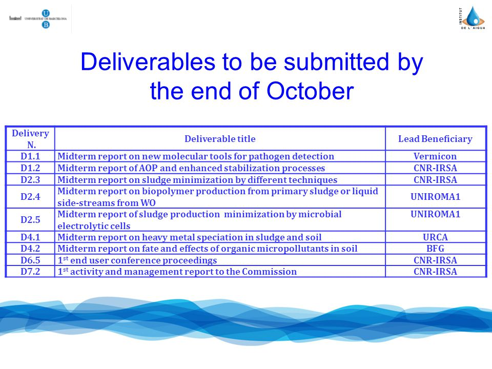 Deliverables to be submitted by the end of October Delivery N.