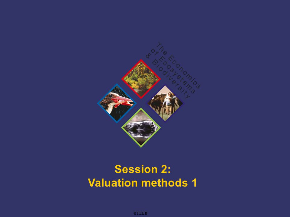 TEEB Training Contingent valuation method: example Bann (1999) –Survey of 300 households WTP for mangrove protection in Benut, Malaysia (243 useable responses) Source: Google Maps