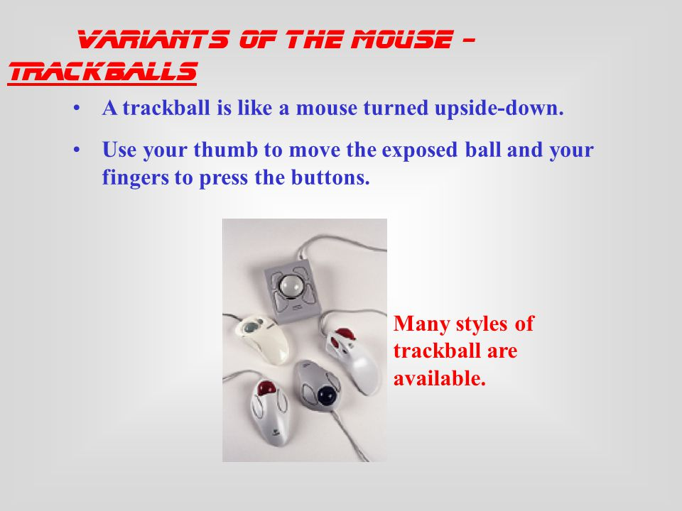 Variants of the Mouse Trackballs Trackpads Integrated Pointed Devices