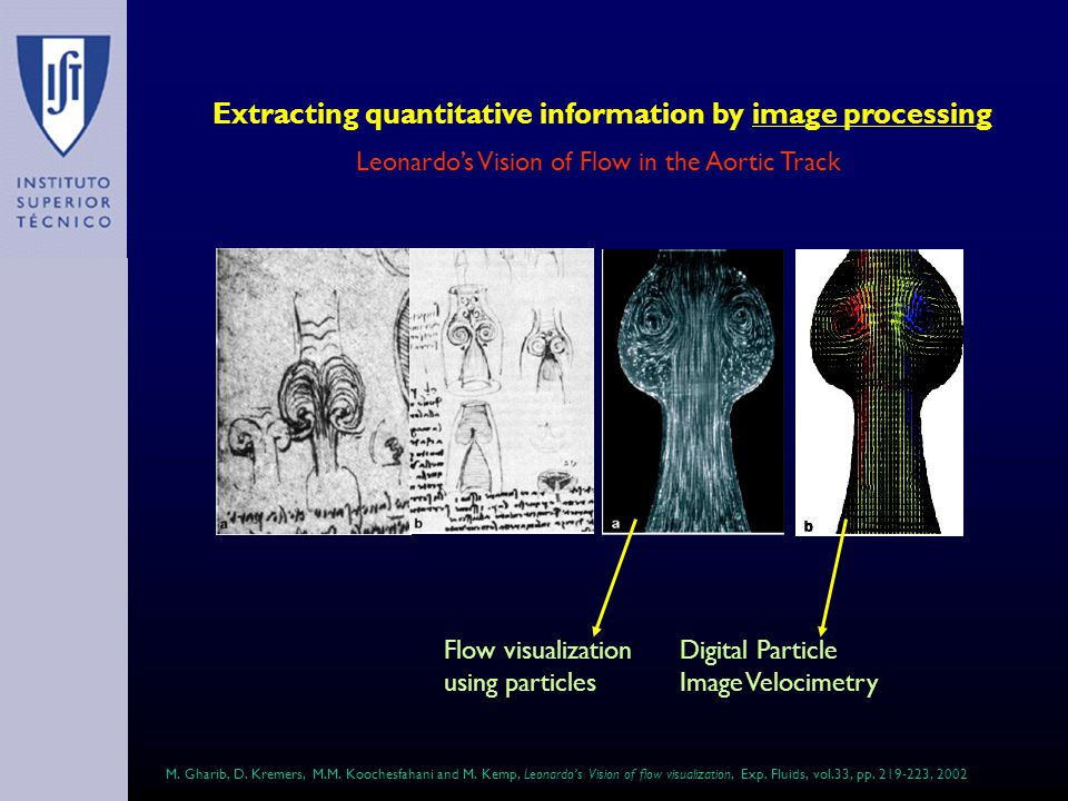 Extracting quantitative information by image processing Leonardos Vision of Flow in the Aortic Track Flow visualization using particles Digital Particle Image Velocimetry M.