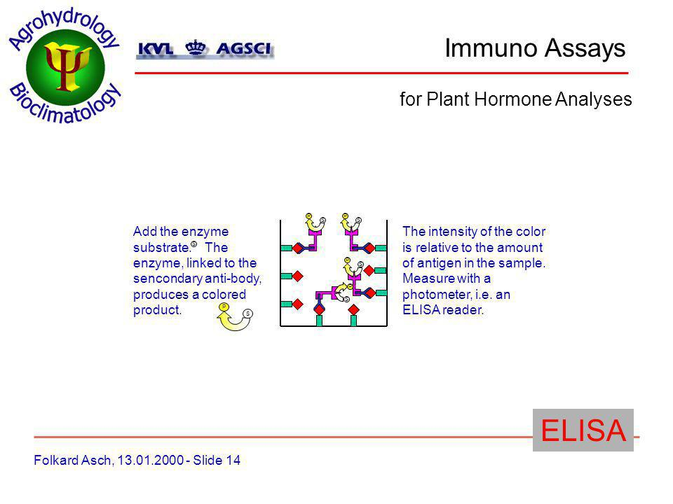 Immuno Assays Folkard Asch, 13.01.2000 - Slide 15 for Plant Hormone Analyses ELISA Advantages: low cost equipment requirements high sensitivity to ABA and CYT no radioactivity easy to set-up