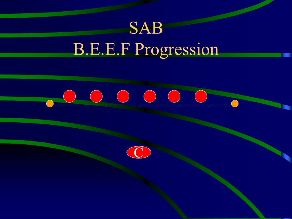 SAB B.E.E.F Progression C
