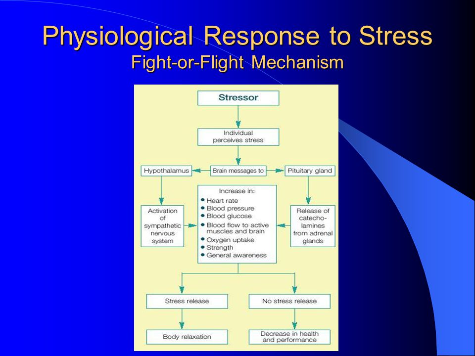 Physiological Response to Stress Fight-or-Flight Mechanism