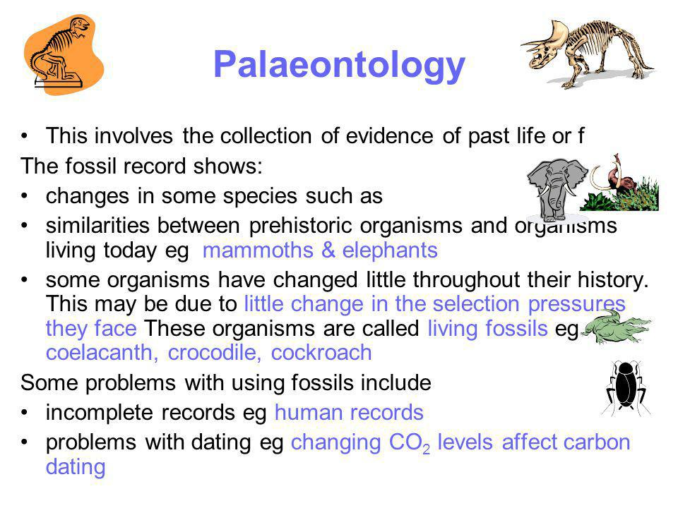 Palaeontology This involves the collection of evidence of past life or f The fossil record shows: changes in some species such as similarities between
