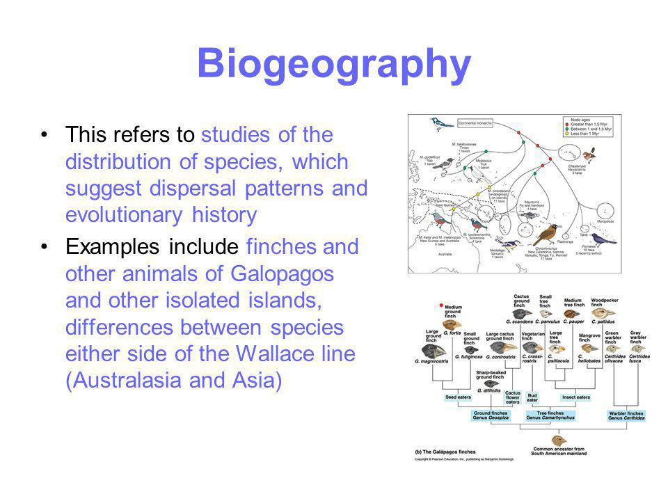Biogeography This refers to studies of the distribution of species, which suggest dispersal patterns and evolutionary history Examples include finches