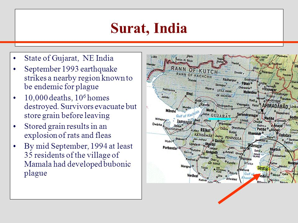 Surat, India State of Gujarat, NE India September 1993 earthquake strikes a nearby region known to be endemic for plague 10,000 deaths, 10 6 homes destroyed.