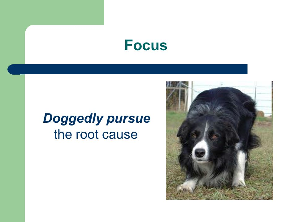 Doggedly pursue the root cause
