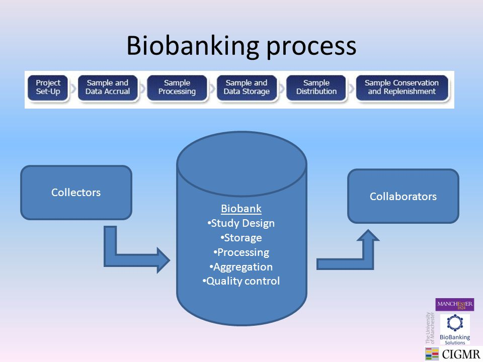 Biobanking process Biobank Study Design Storage Processing Aggregation Quality control Collectors Collaborators