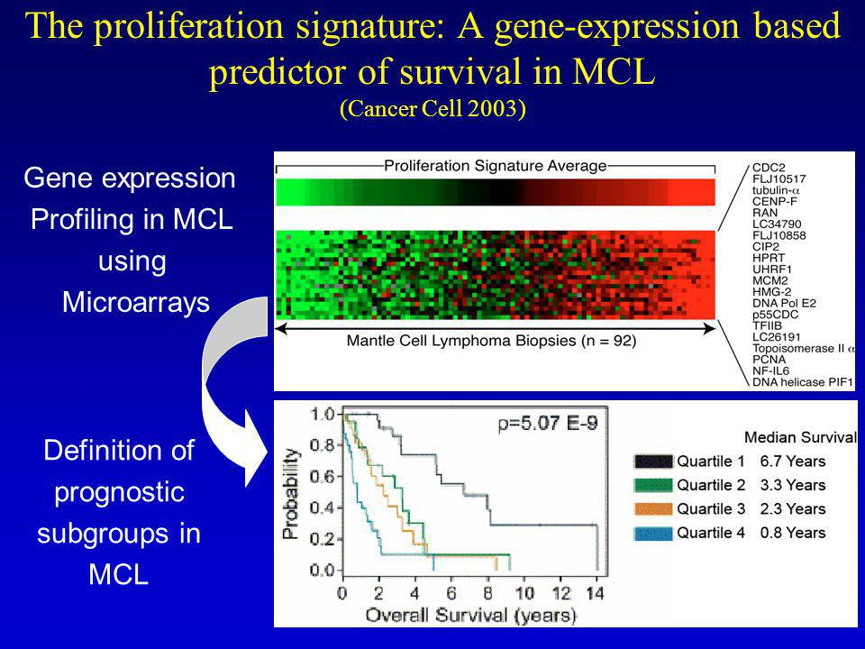 The proliferation signature: A gene-expression based predictor of survival in MCL (Cancer Cell 2003) Definition of prognostic subgroups in MCL Gene expression Profiling in MCL using Microarrays