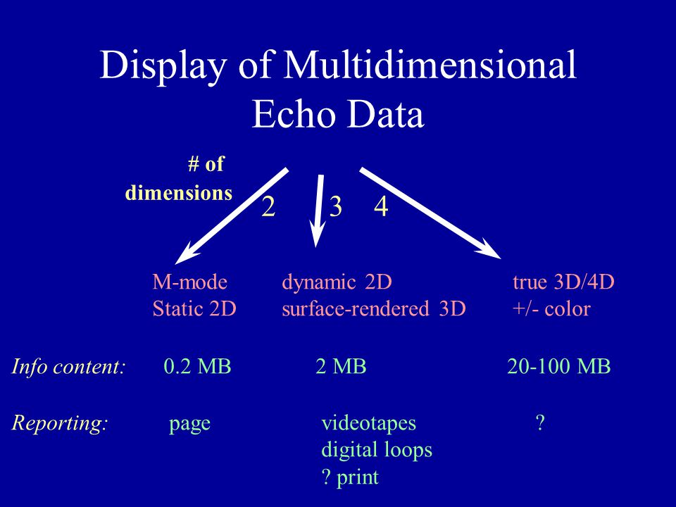 Display of Multidimensional Echo Data M-mode Static 2D dynamic 2D surface-rendered 3D true 3D/4D +/- color # of dimensions 234 Info content: Reporting