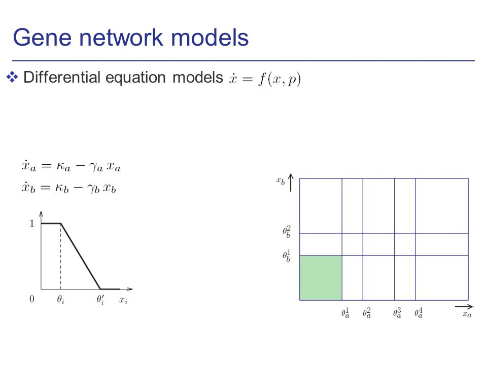 Gene network models vDifferential equation models