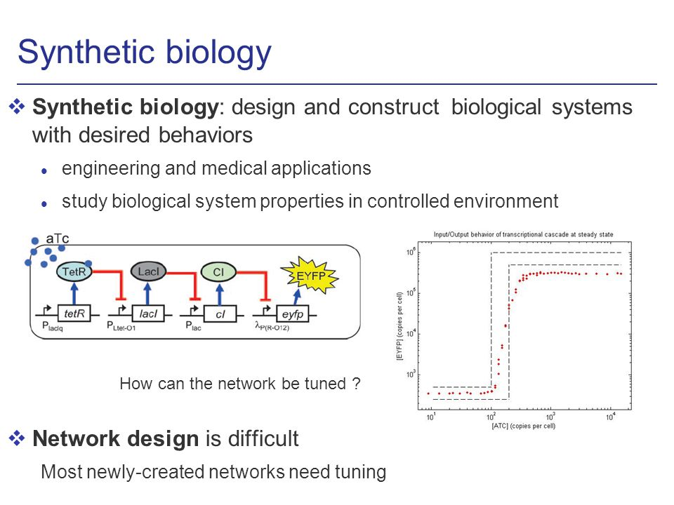 Synthetic biology vSynthetic biology: design and construct biological systems with desired behaviors l engineering and medical applications l study biological system properties in controlled environment vNetwork design is difficult Most newly-created networks need tuning How can the network be tuned
