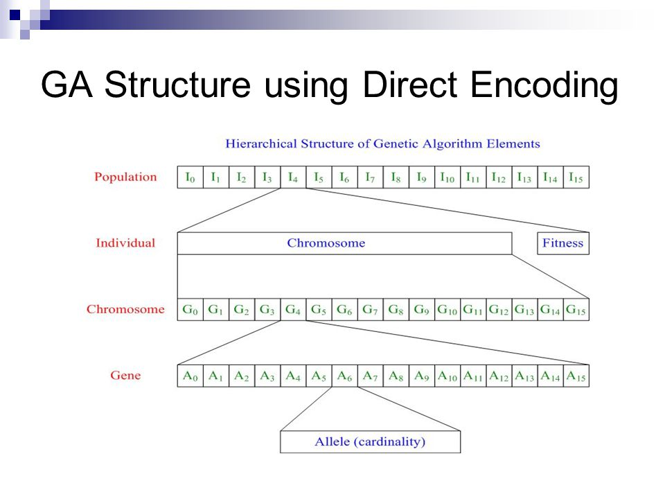 GA Structure using Direct Encoding