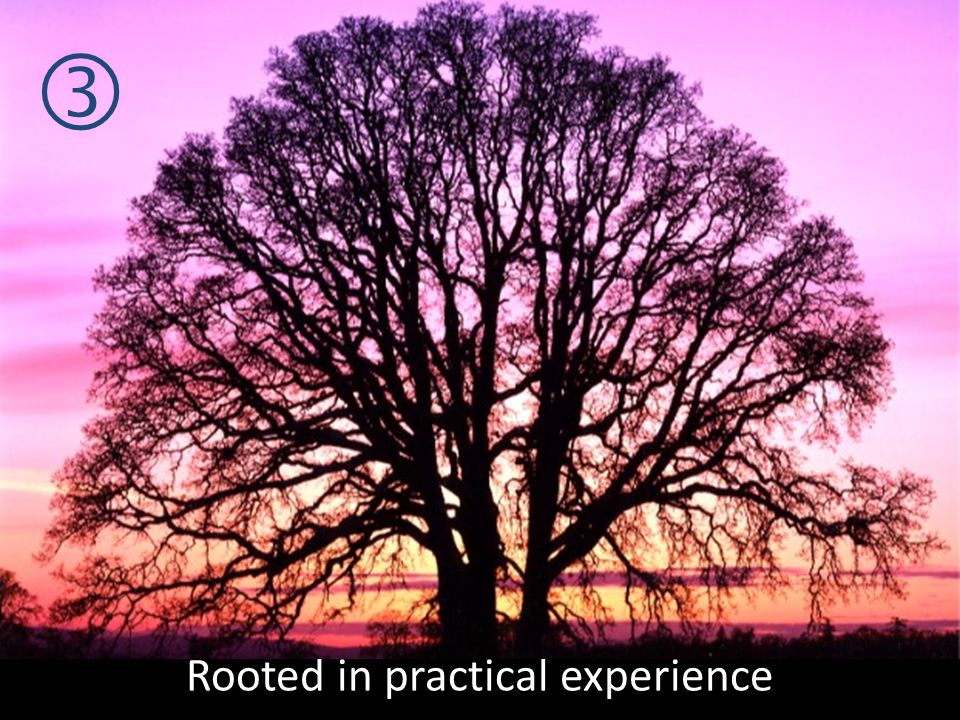 Rooted in practical experience
