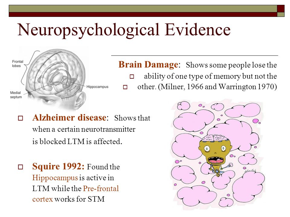 Neuropsychological Evidence Brain Damage: Shows some people lose the ability of one type of memory but not the other. (Milner, 1966 and Warrington 197