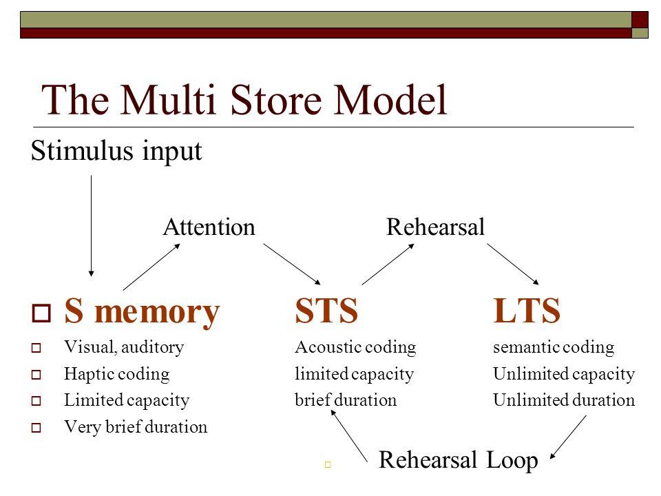 The Multi Store Model Stimulus input Attention Rehearsal S memorySTSLTS Visual, auditoryAcoustic codingsemantic coding Haptic codinglimited capacityUn