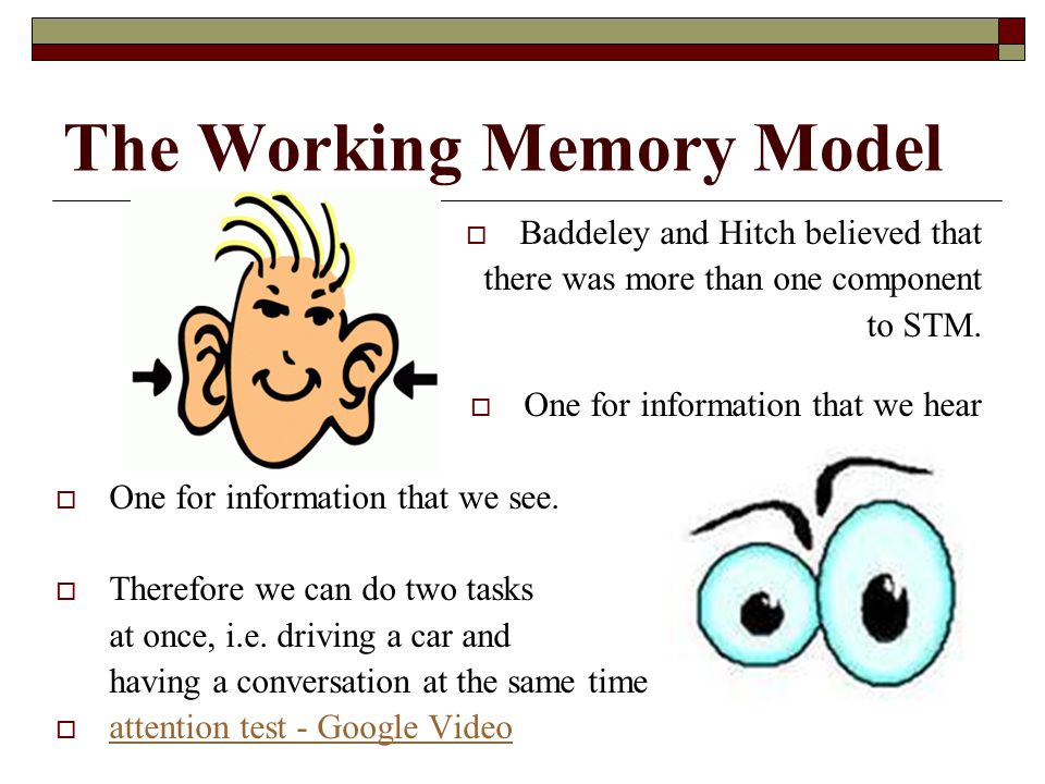 The Working Memory Model Baddeley and Hitch believed that there was more than one component to STM. One for information that we hear One for informati