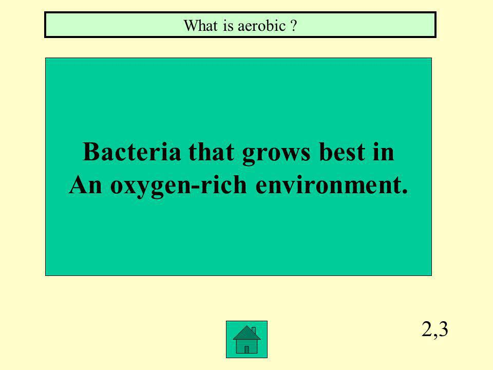 2,2 Round or sphere shaped bacteria. What is coccus