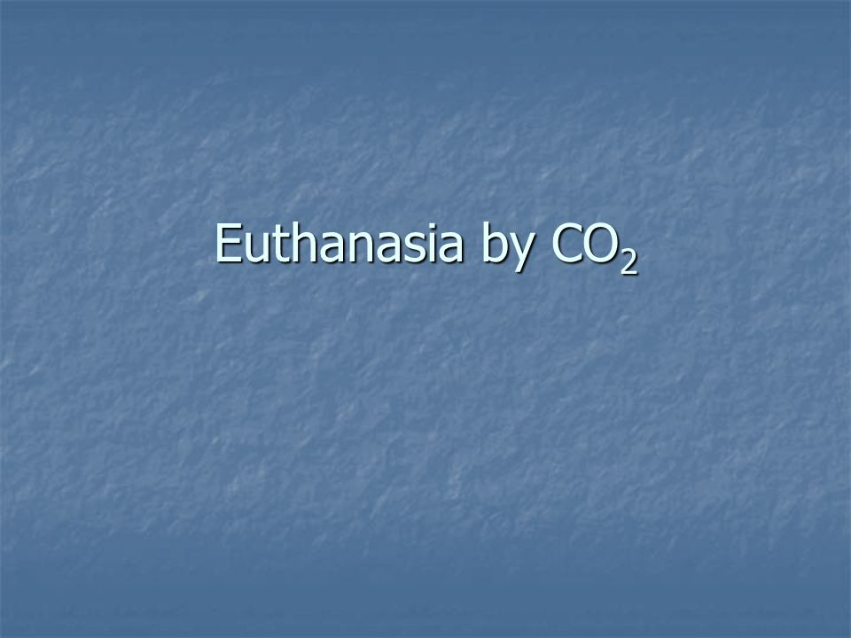 Euthanasia by CO 2