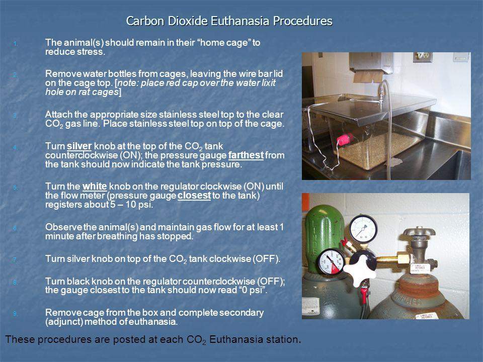 Carbon Dioxide Euthanasia Procedures 1. 1.