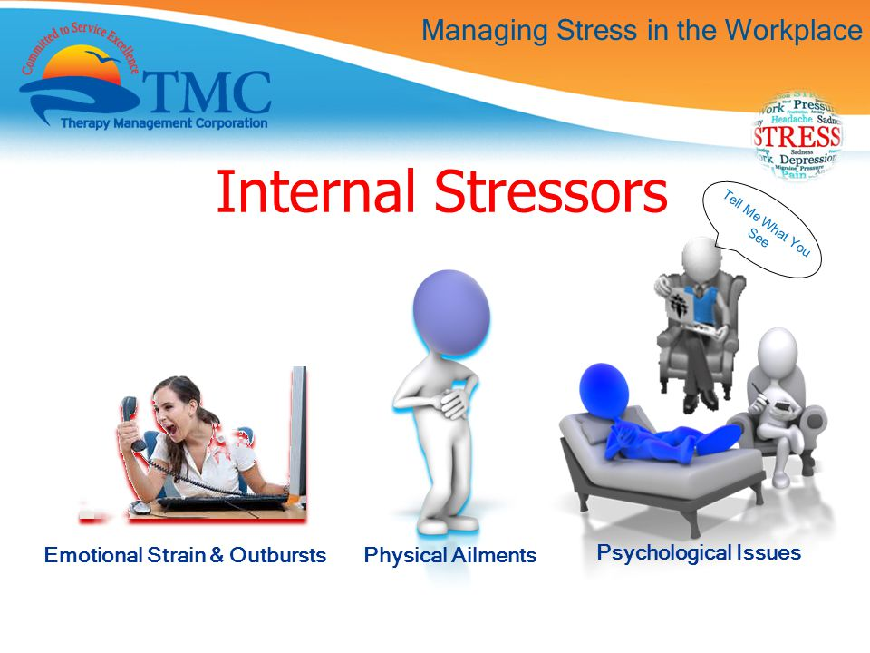 Managing Stress in the Workplace Internal Stressors Emotional Strain & Outbursts Physical Ailments Psychological Issues Tell Me What You See