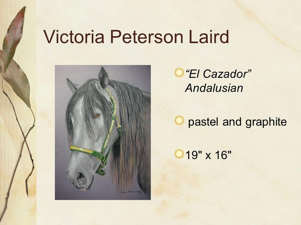 Victoria Peterson Laird El Cazador Andalusian pastel and graphite 19 x 16