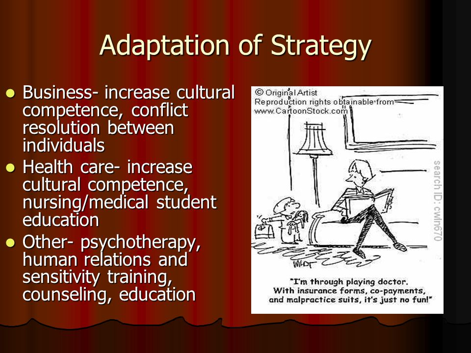 Adaptation of Strategy Business- increase cultural competence, conflict resolution between individuals Business- increase cultural competence, conflict resolution between individuals Health care- increase cultural competence, nursing/medical student education Health care- increase cultural competence, nursing/medical student education Other- psychotherapy, human relations and sensitivity training, counseling, education Other- psychotherapy, human relations and sensitivity training, counseling, education