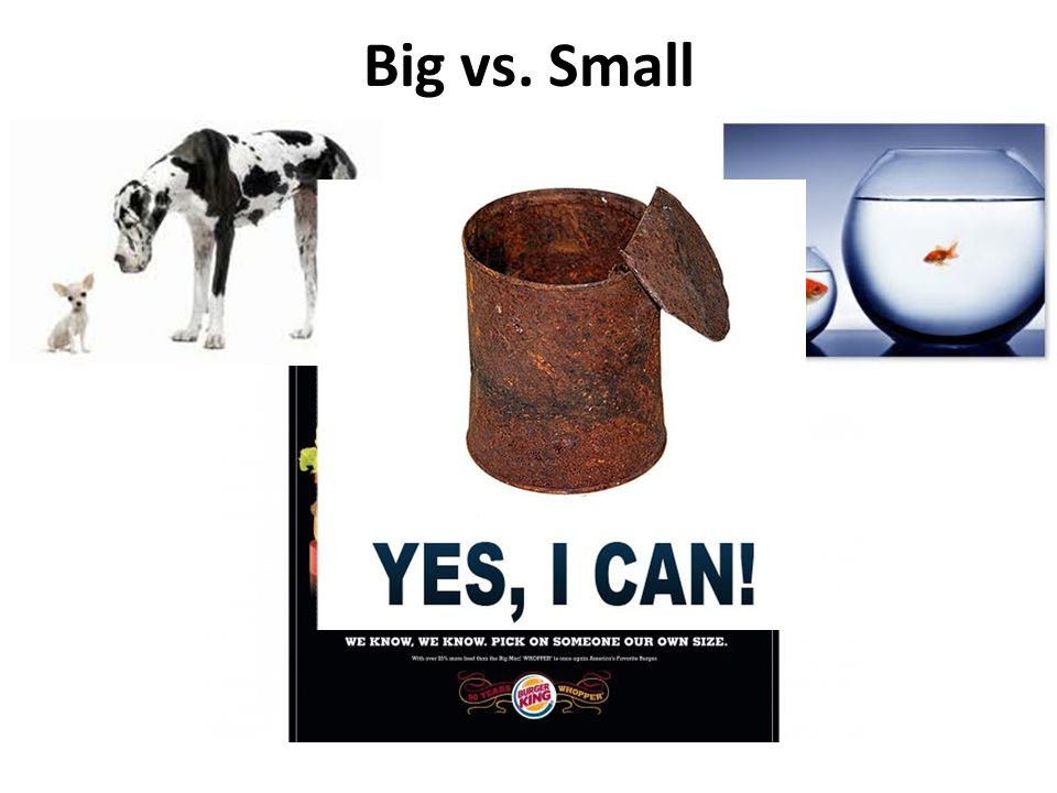 Big vs. Small