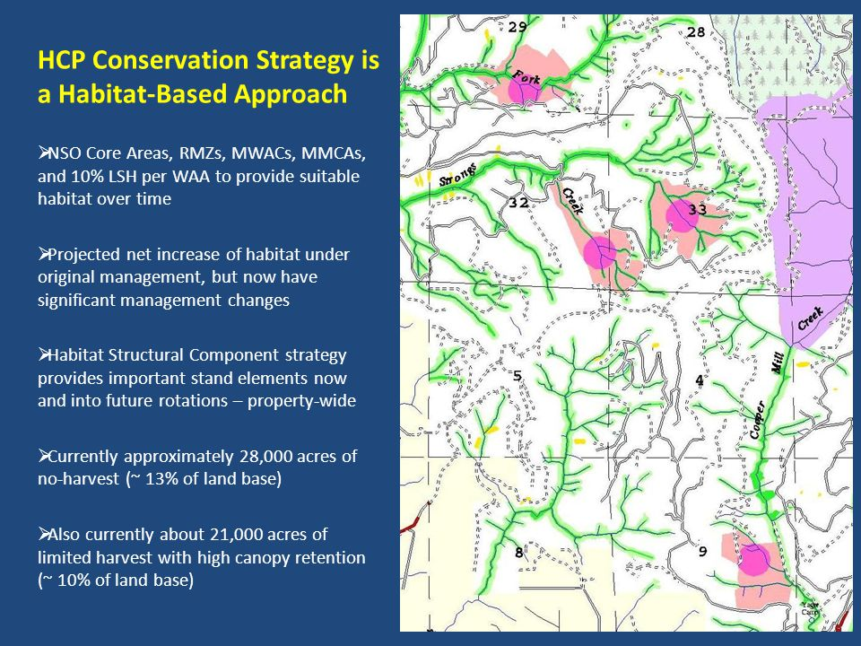 HCP Conservation Strategy is a Habitat-Based Approach NSO Core Areas, RMZs, MWACs, MMCAs, and 10% LSH per WAA to provide suitable habitat over time Projected net increase of habitat under original management, but now have significant management changes Habitat Structural Component strategy provides important stand elements now and into future rotations – property-wide Currently approximately 28,000 acres of no-harvest (~ 13% of land base) Also currently about 21,000 acres of limited harvest with high canopy retention (~ 10% of land base)