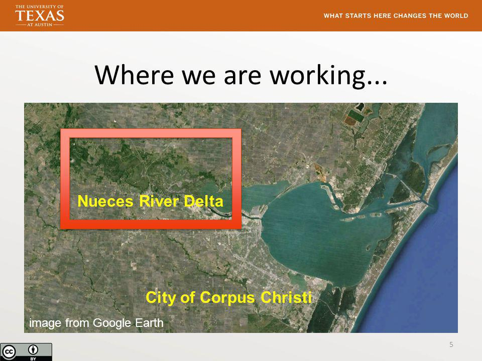 Where we are working... Nueces River Delta City of Corpus Christi image from Google Earth 5